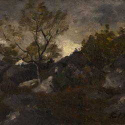 Paysage aux rochers